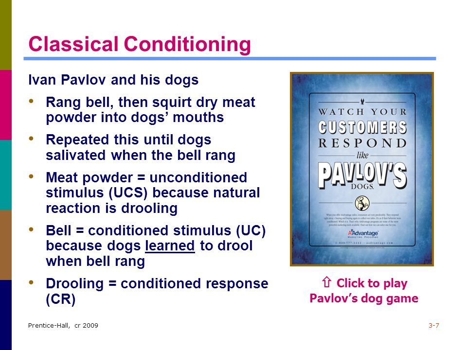 Prentice-Hall, cr 20093-7 Classical Conditioning Ivan Pavlov and his dogs Rang bell, then squirt dry meat powder into dogs' mouths Repeated this until