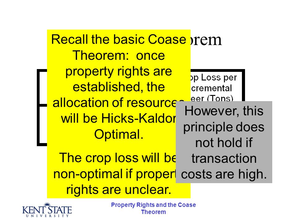 Property Rights and the Coase Theorem The Coase Theorem Recall the basic Coase Theorem: once property rights are established, the allocation of resources will be Hicks-Kaldor Optimal.