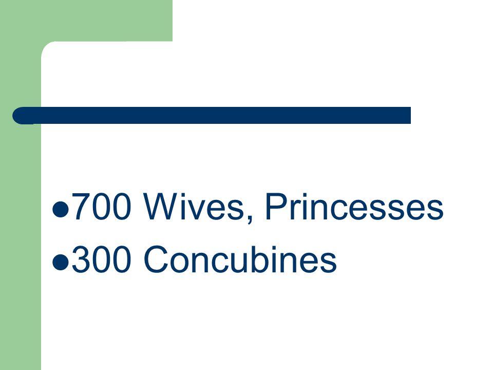 700 Wives, Princesses 300 Concubines