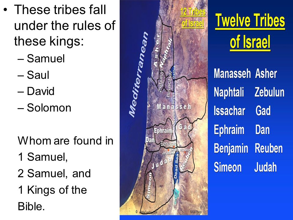 2 Samuel – David's rise and his kingship Saul's foolish actions cost him his kingship.