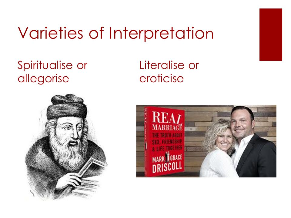 Varieties of Interpretatio n Spiritualise or allegorise Literalise or eroticise