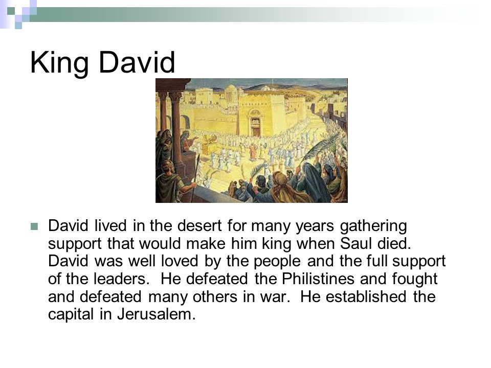 King David David lived in the desert for many years gathering support that would make him king when Saul died.