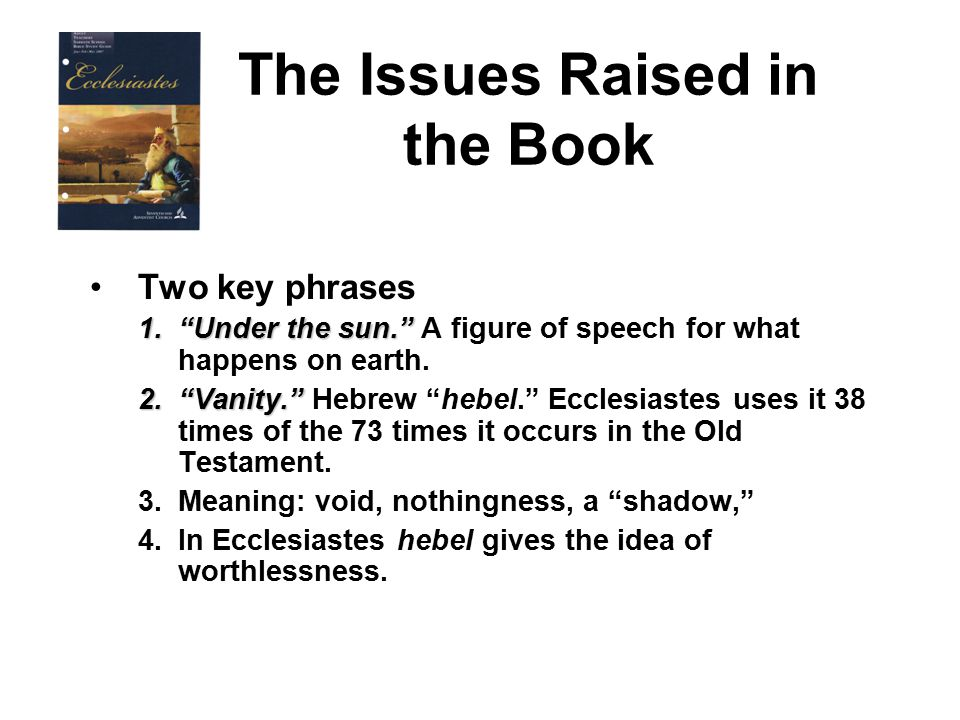 The Issues Raised in the Book Two key phrases 1. Under the sun. 1. Under the sun. A figure of speech for what happens on earth.