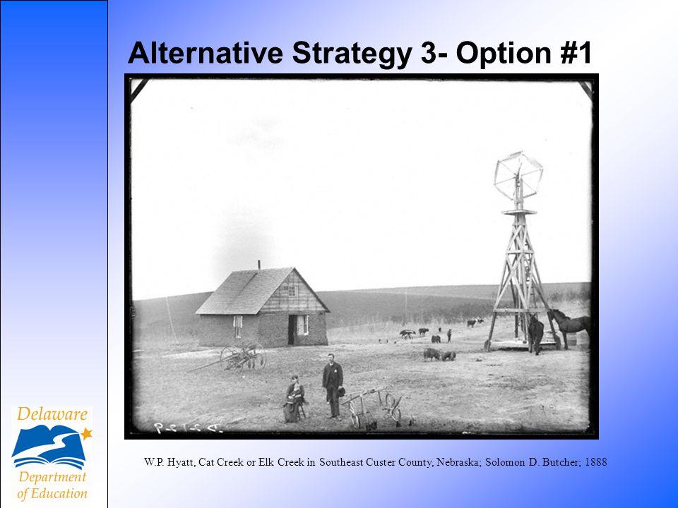 Alternative Strategy 3- Option #1 W.P. Hyatt, Cat Creek or Elk Creek in Southeast Custer County, Nebraska; Solomon D. Butcher; 1888