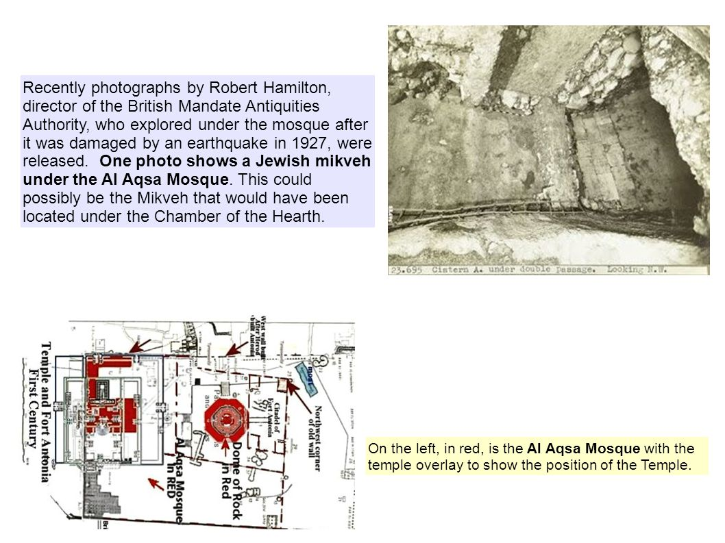 Recently photographs by Robert Hamilton, director of the British Mandate Antiquities Authority, who explored under the mosque after it was damaged by an earthquake in 1927, were released.