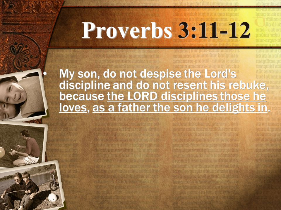 Proverbs 3:11-12 My son, do not despise the Lord s discipline and do not resent his rebuke, because the LORD disciplines those he loves, as a father the son he delights in.