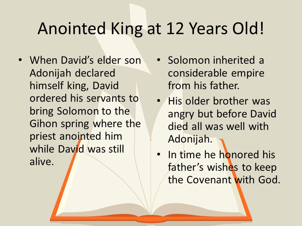 Solomon's Highlights Was King for 40 years after the death of his Father David.