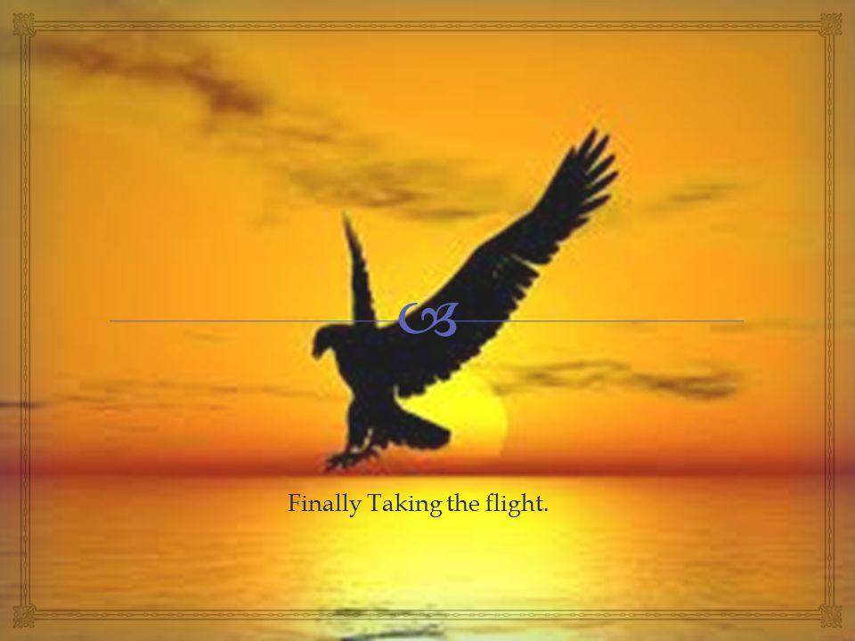  Finally Taking the flight.