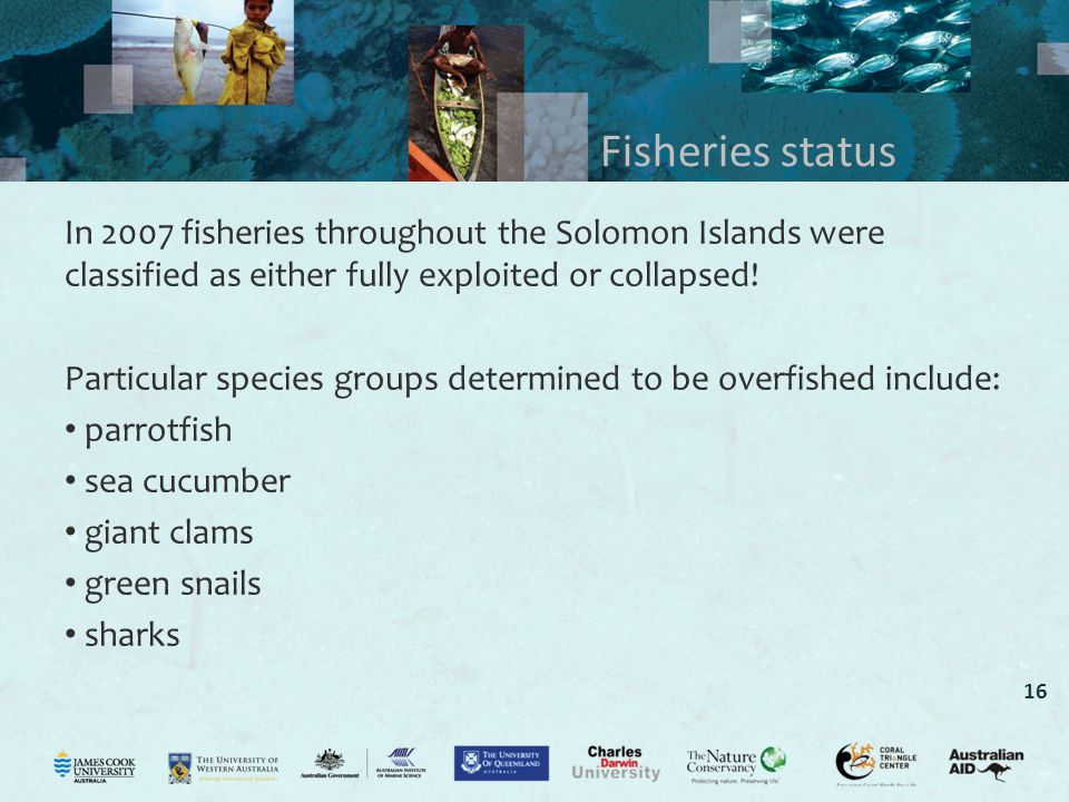 16 Fisheries status In 2007 fisheries throughout the Solomon Islands were classified as either fully exploited or collapsed.