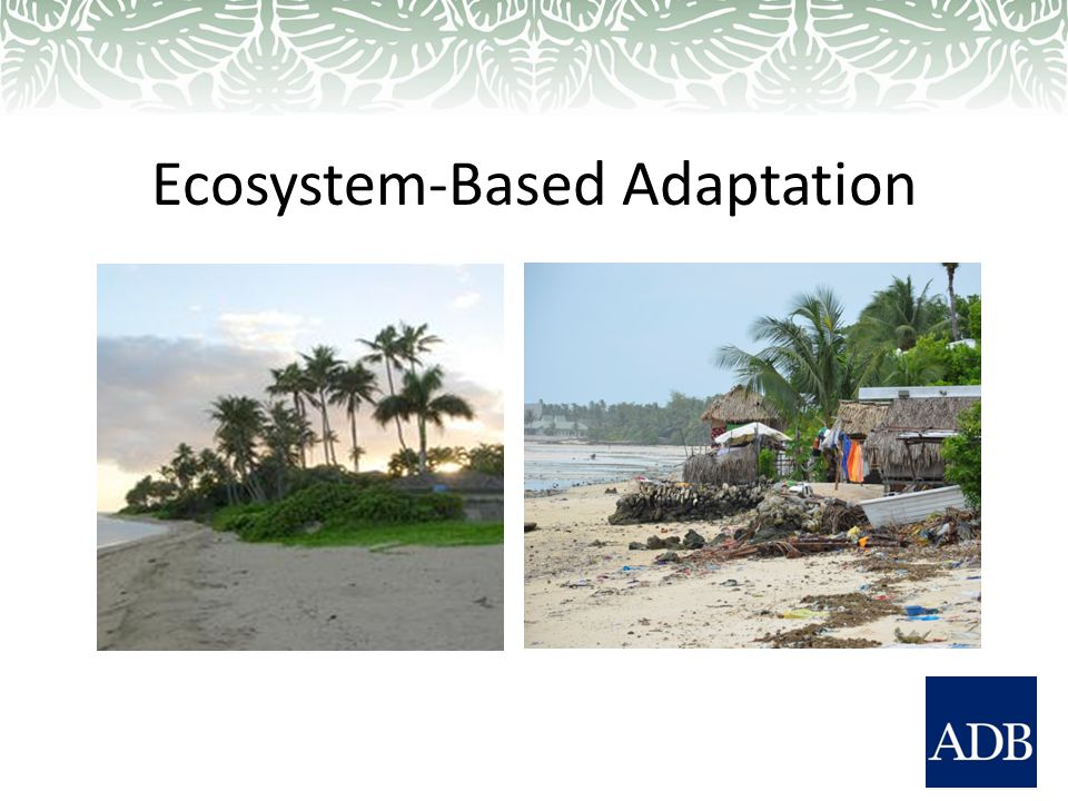 Ecosystem-Based Adaptation