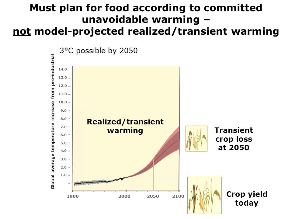 Committed crop yield loss at 2080 Transient crop loss at 2050 Crop yield today Must plan for food according to committed unavoidable warming – not model-projected realized/transient warming Realized/transient warming