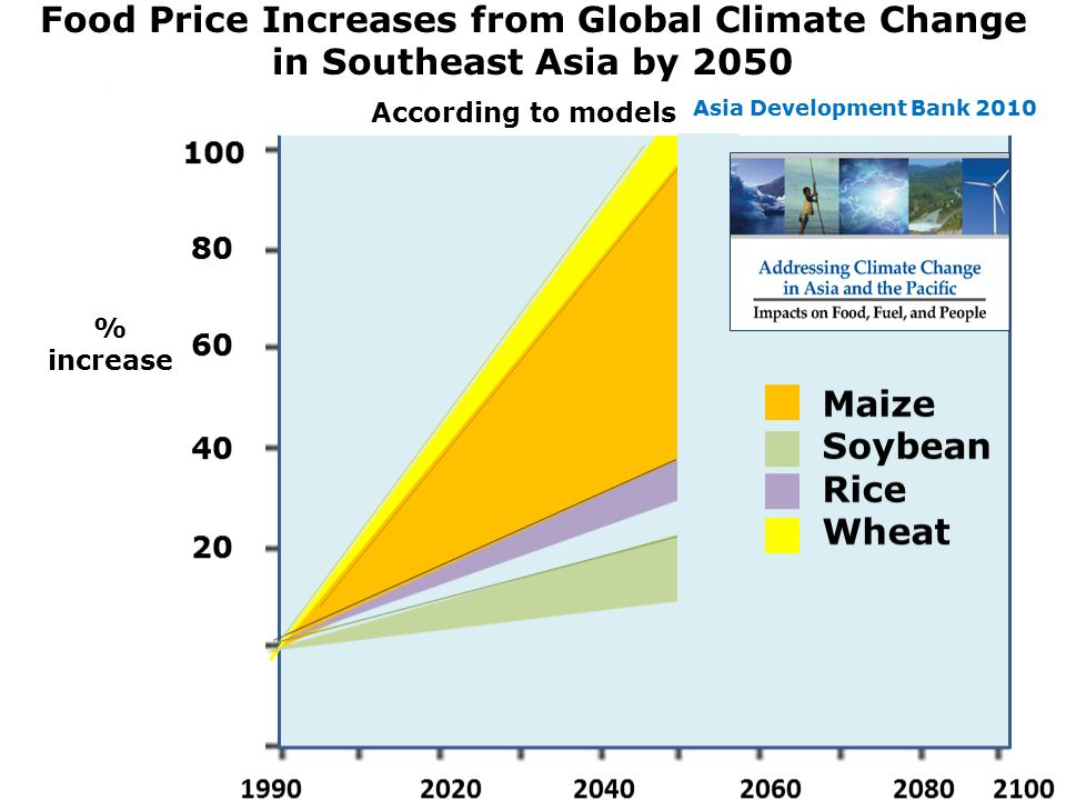 100 80 60 40 20 1990 2020 2040 2060 2080 2100 Maize Soybean Rice Wheat Food price increases from global climate change in S.