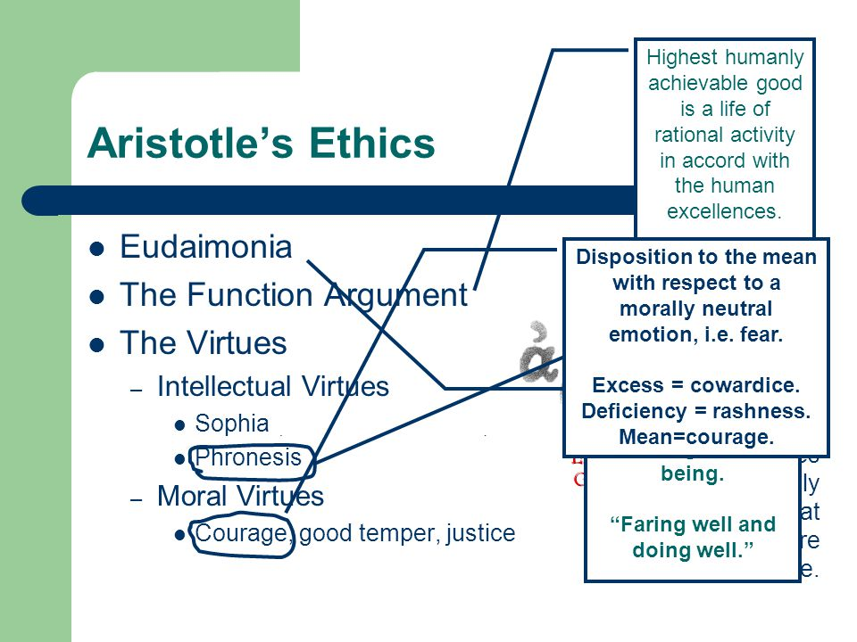 Aristotle's Ethics Eudaimonia The Function Argument The Virtues – Intellectual Virtues Sophia (theoretical wisdom) Phronesis – Moral Virtues Courage, good temper, justice Practical Wisdom: The ability to size up the situation, moral vision.