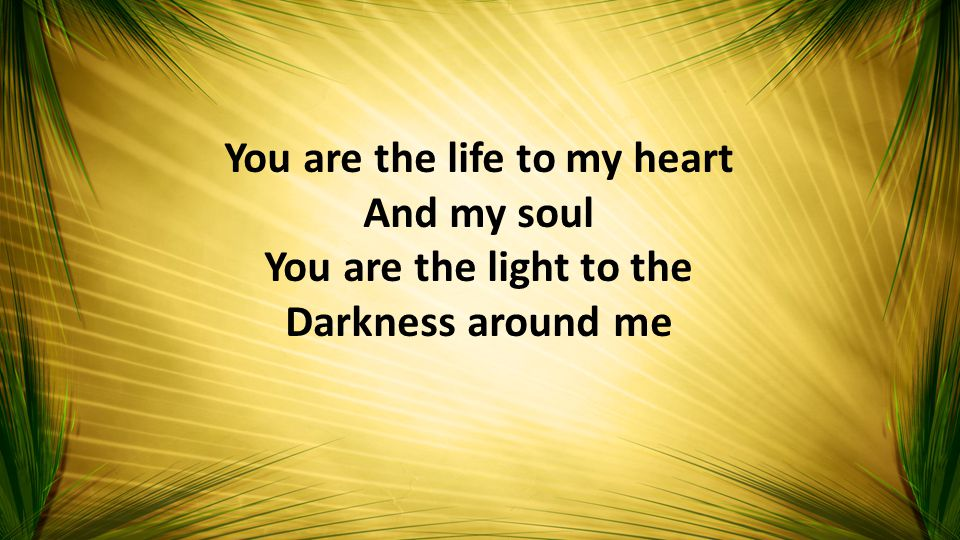You are the life to my heart And my soul You are the light to the Darkness around me