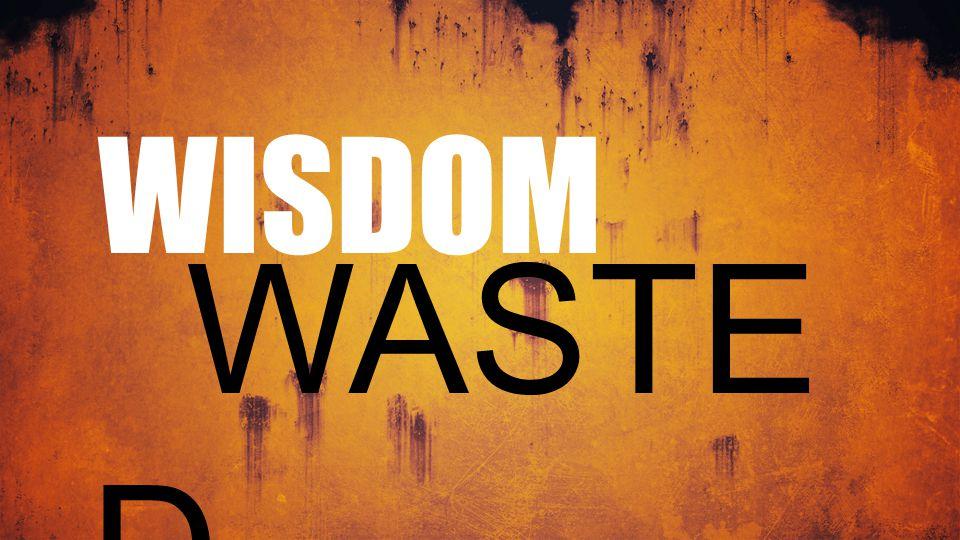 WISDOM WASTE D
