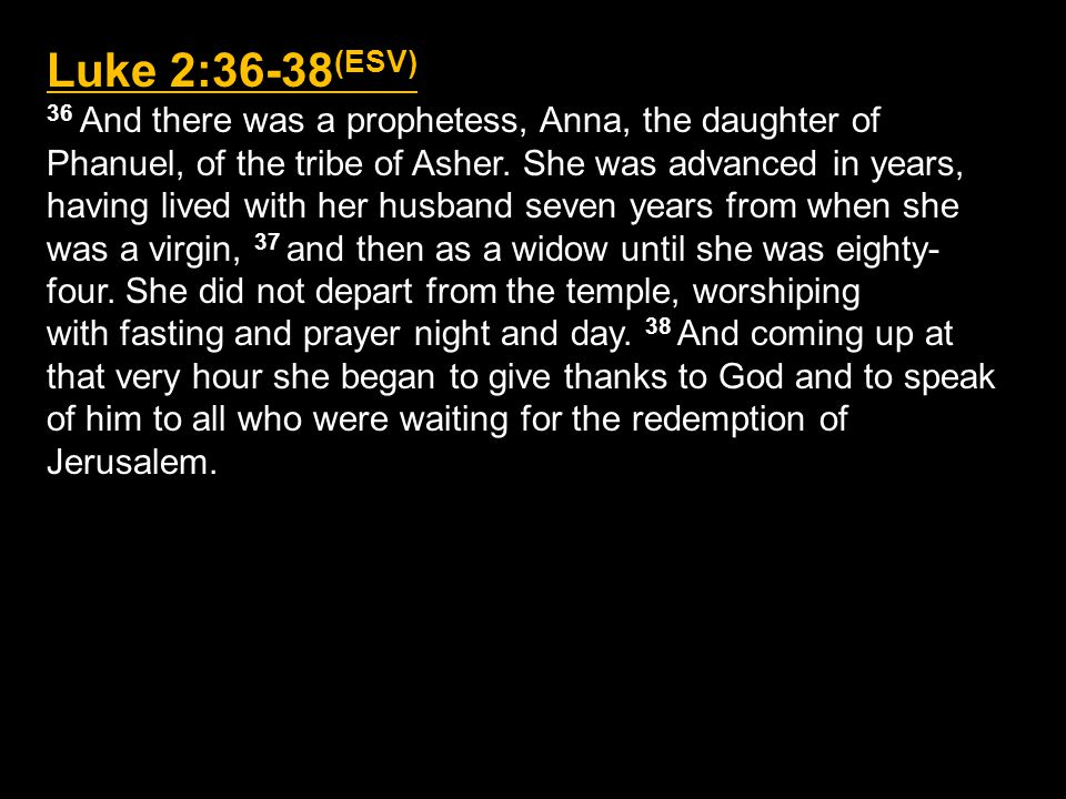 Simeon & Anna: Faithful Plodders