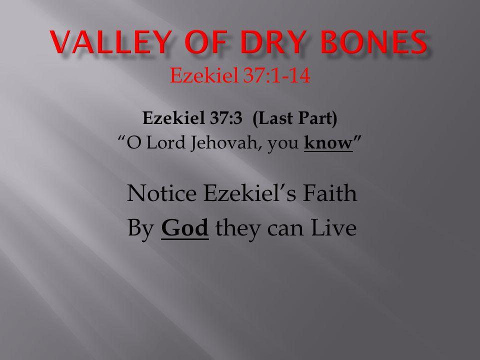 Ezekiel 37:1-14 Ezekiel 37:3 (Last Part) O Lord Jehovah, you know Notice Ezekiel's Faith By God they can Live