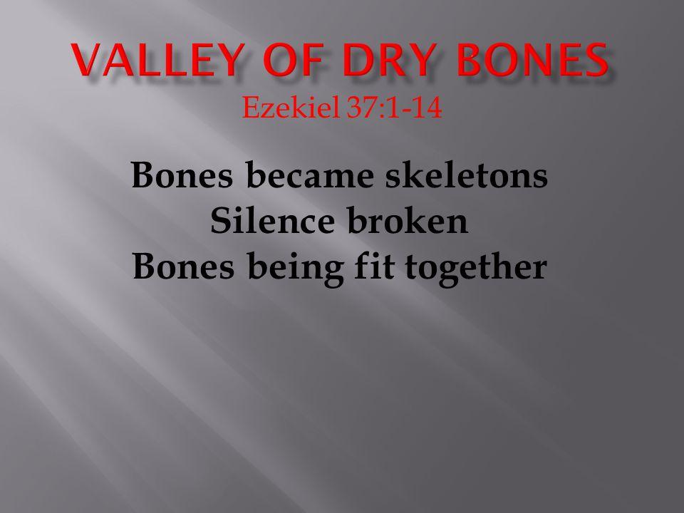 Ezekiel 37:1-14 Bones became skeletons Silence broken Bones being fit together