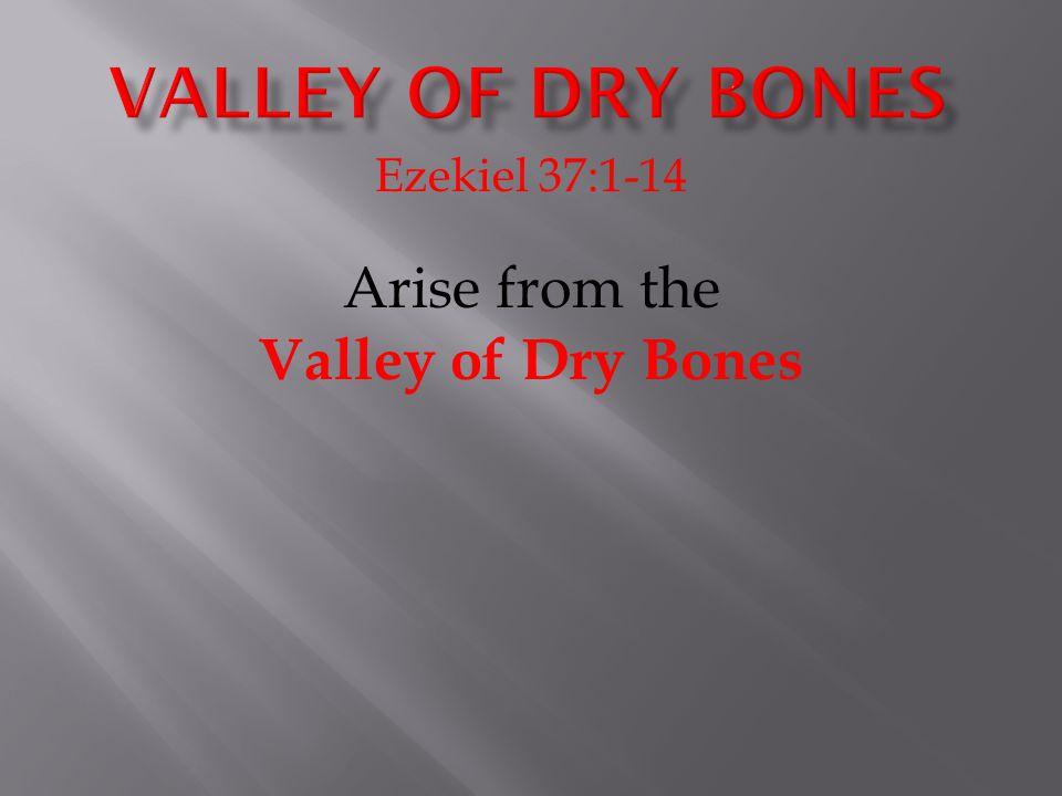 Ezekiel 37:1-14 Arise from the Valley of Dry Bones