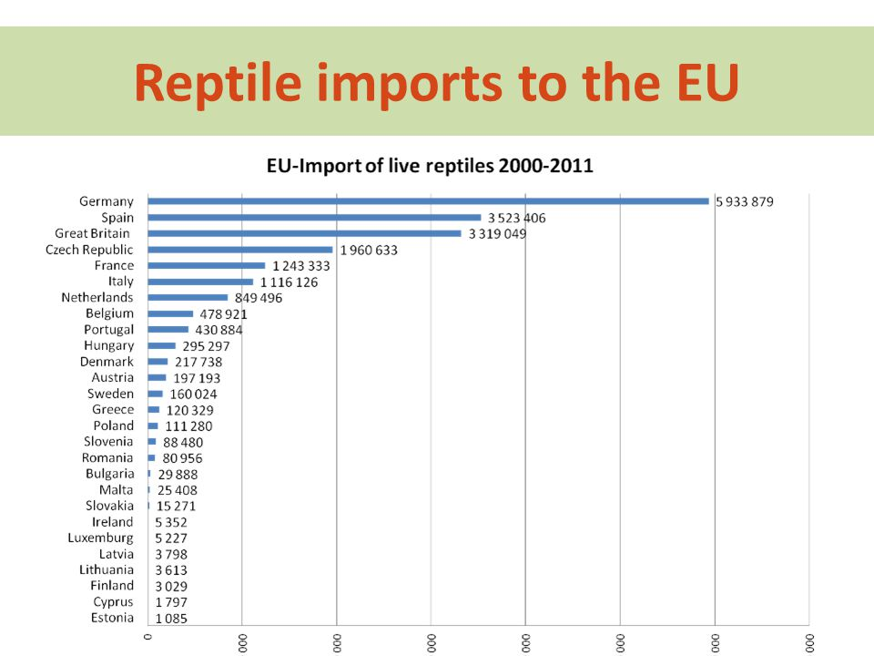 Reptile imports to the EU
