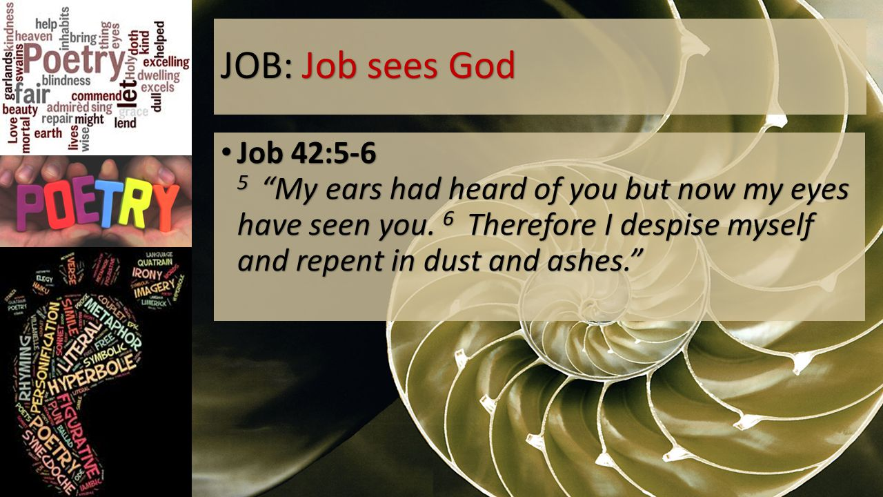 JOB: Job sees God Job 42:5-6 5 My ears had heard of you but now my eyes have seen you.