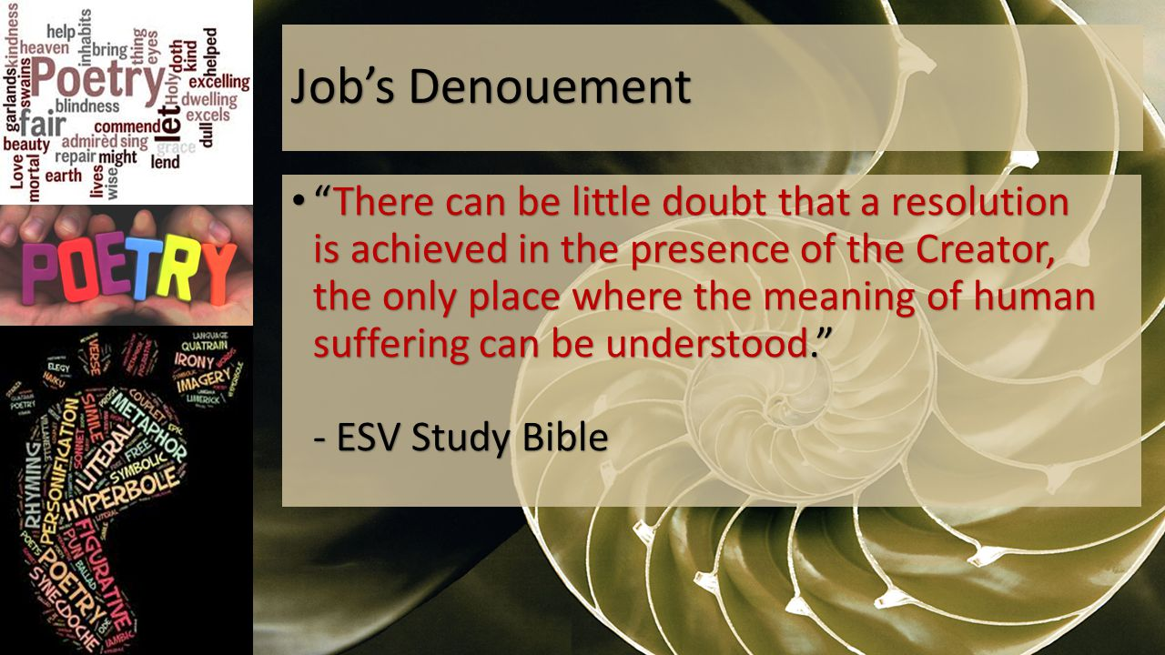 Job's Denouement There can be little doubt that a resolution is achieved in the presence of the Creator, the only place where the meaning of human suffering can be understood. - ESV Study Bible There can be little doubt that a resolution is achieved in the presence of the Creator, the only place where the meaning of human suffering can be understood. - ESV Study Bible
