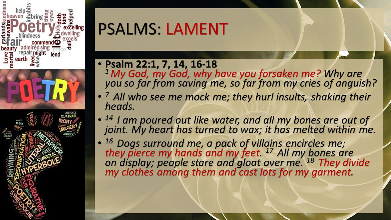 PSALMS: LAMENT Psalm 22:1, 7, 14, 16-18 1 My God, my God, why have you forsaken me.