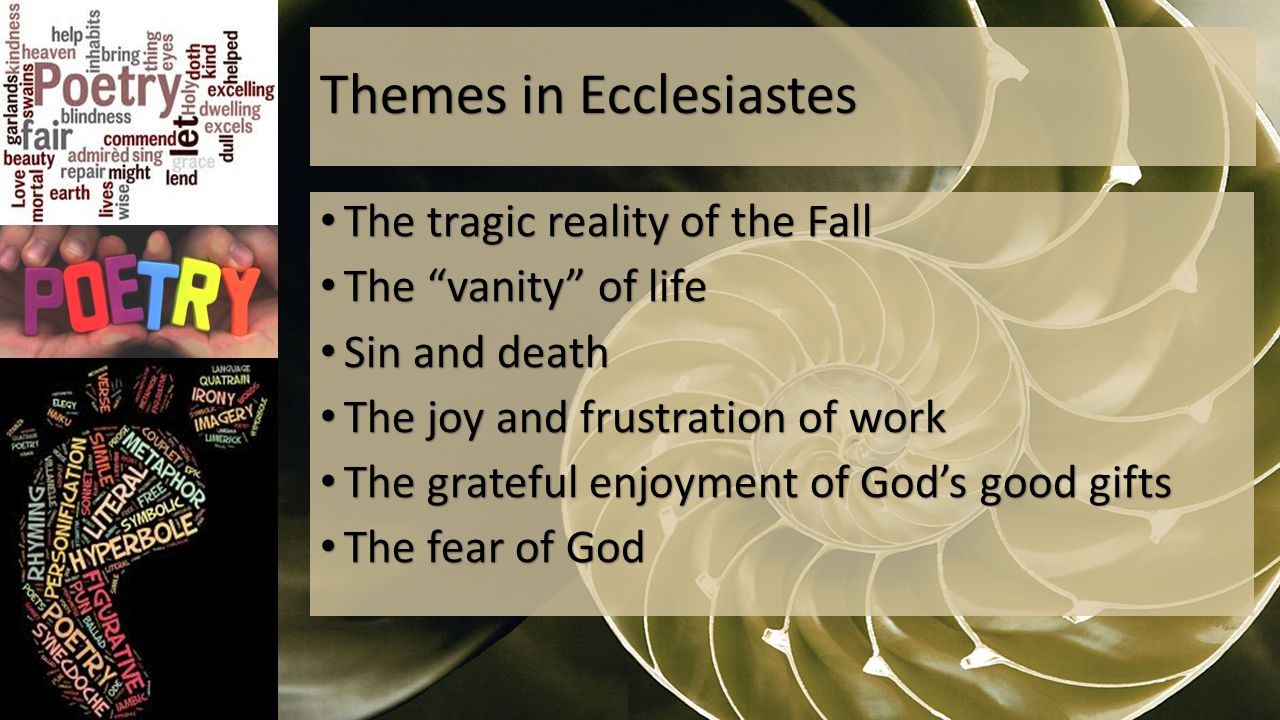Themes in Ecclesiastes The tragic reality of the Fall The tragic reality of the Fall The vanity of life The vanity of life Sin and death Sin and death The joy and frustration of work The joy and frustration of work The grateful enjoyment of God's good gifts The grateful enjoyment of God's good gifts The fear of God The fear of God