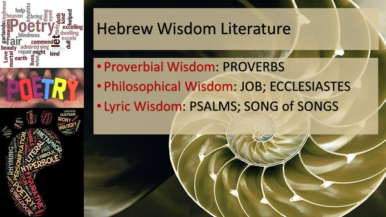 Hebrew Wisdom Literature Proverbial Wisdom: PROVERBS Proverbial Wisdom: PROVERBS Philosophical Wisdom: JOB; ECCLESIASTES Philosophical Wisdom: JOB; ECCLESIASTES Lyric Wisdom: PSALMS; SONG of SONGS Lyric Wisdom: PSALMS; SONG of SONGS