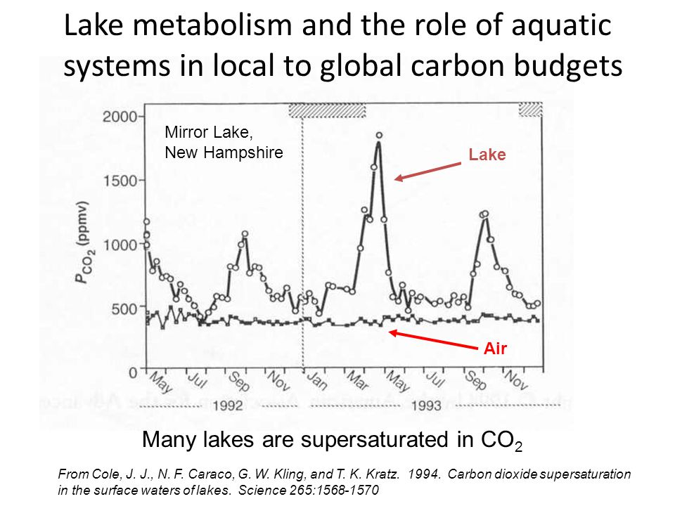 From Cole, J. J., N. F. Caraco, G. W. Kling, and T. K. Kratz. 1994. Carbon dioxide supersaturation in the surface waters of lakes. Science 265:1568-15
