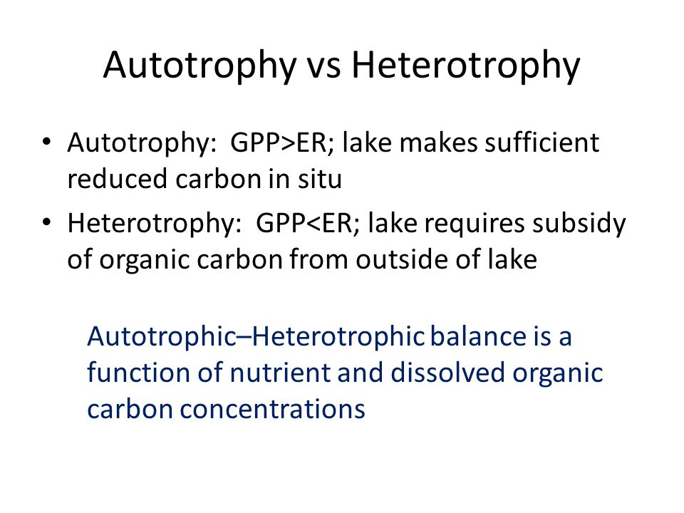 Autotrophy vs Heterotrophy Autotrophy: GPP>ER; lake makes sufficient reduced carbon in situ Heterotrophy: GPP<ER; lake requires subsidy of organic carbon from outside of lake Autotrophic–Heterotrophic balance is a function of nutrient and dissolved organic carbon concentrations