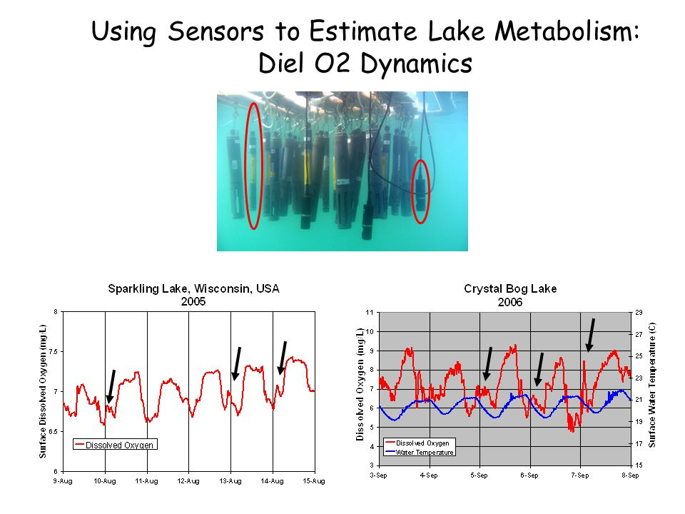 Using Sensors to Estimate Lake Metabolism: Diel O2 Dynamics