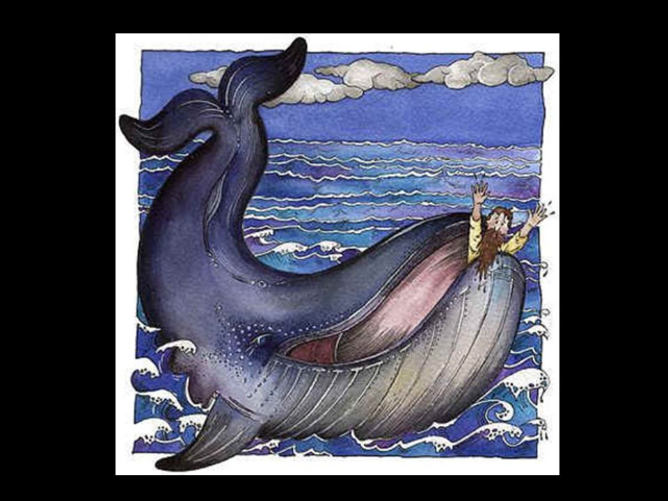 Meet the unchurched sailors Jonah 1:7-8 7 Then the sailors said to each other, Come, let us cast lots to find out who is responsible for this calamity. They cast lots and the lot fell on Jonah.