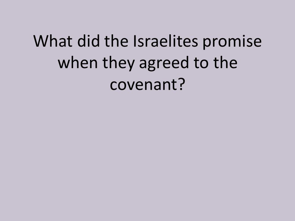 What did the Israelites promise when they agreed to the covenant