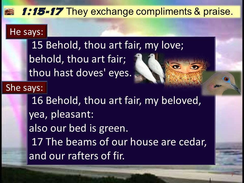 7 15 Behold, thou art fair, my love; behold, thou art fair; thou hast doves eyes.