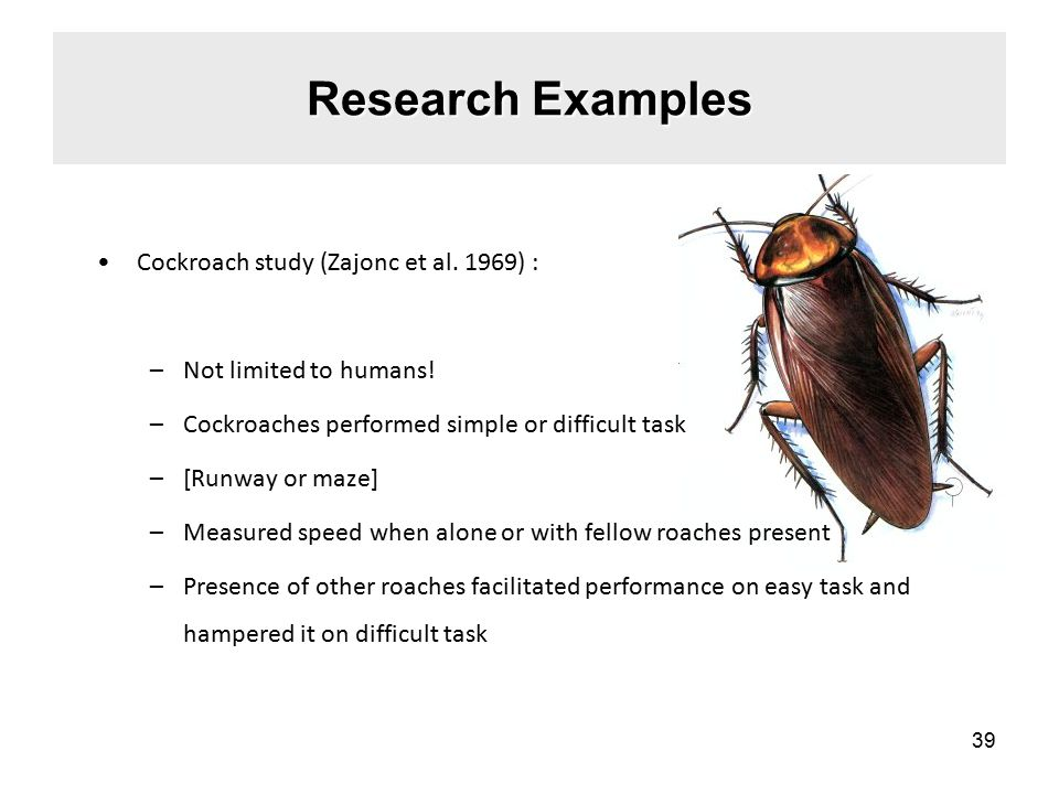 Research Examples Cockroach study (Zajonc et al.1969) : –Not limited to humans.