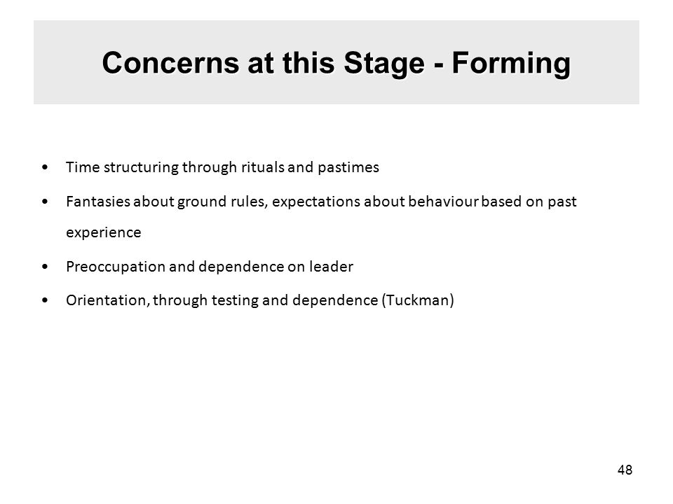 Concerns at this Stage - Forming Time structuring through rituals and pastimes Fantasies about ground rules, expectations about behaviour based on past experience Preoccupation and dependence on leader Orientation, through testing and dependence (Tuckman) 48