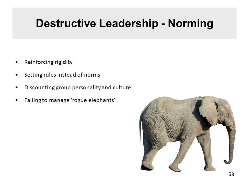 Destructive Leadership - Norming Reinforcing rigidity Setting rules instead of norms Discounting group personality and culture Failing to manage 'rogue elephants' 58