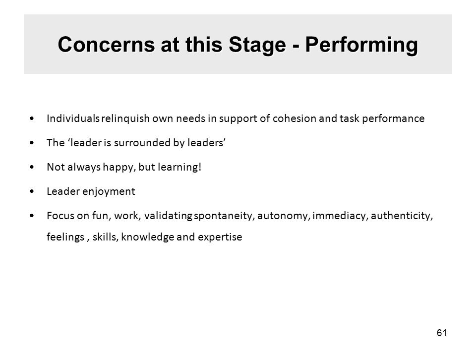 Concerns at this Stage - Performing Individuals relinquish own needs in support of cohesion and task performance The 'leader is surrounded by leaders' Not always happy, but learning.