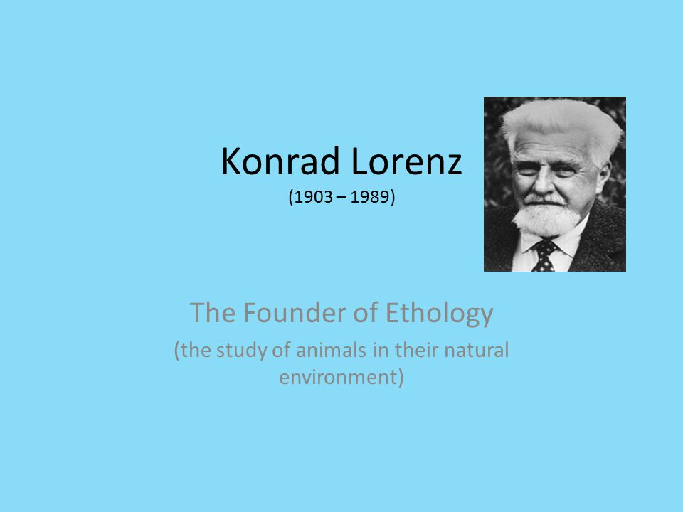 Konrad Lorenz (1903 – 1989) The Founder of Ethology (the study of animals in their natural environment)
