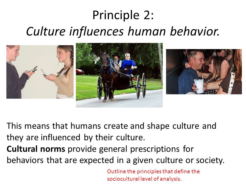 Principle 2: Culture influences human behavior. This means that humans create and shape culture and they are influenced by their culture. Cultural nor