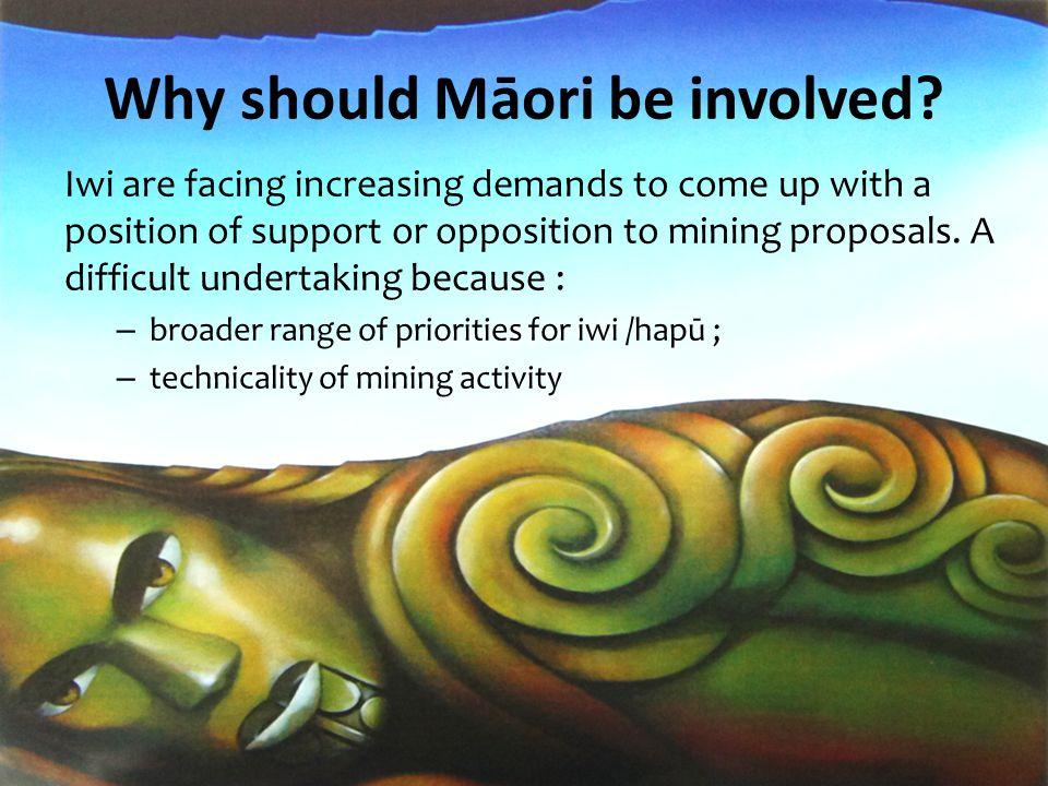 Iwi Environmental Principles WhakapapaKaitiakitangaManawhenua Mauri Taonga