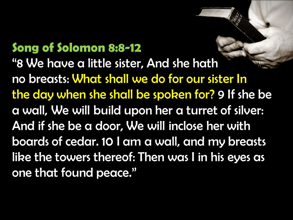 Song of Solomon 8:8-12 8 We have a little sister, And she hath no breasts: What shall we do for our sister In the day when she shall be spoken for.