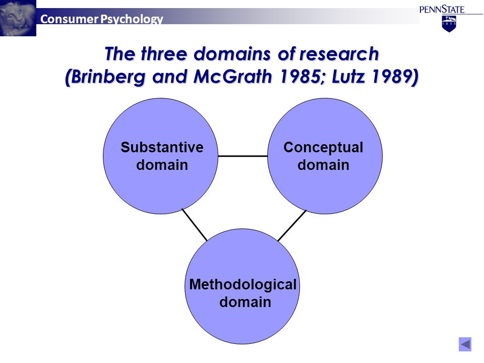 Consumer Psychology The three domains of research (Brinberg and McGrath 1985; Lutz 1989) Conceptual domain Substantive domain Methodological domain