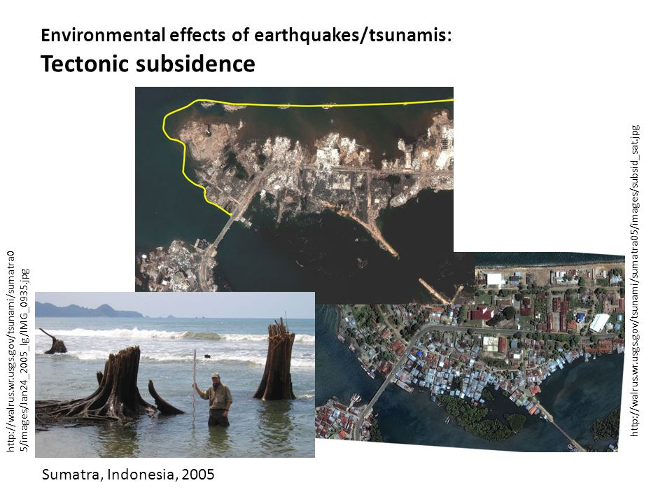 http://walrus.wr.usgs.gov/tsunami/sumatra0 5/images/Jan24_2005_lg/IMG_0935.jpg Environmental effects of earthquakes/tsunamis: Tectonic subsidence http