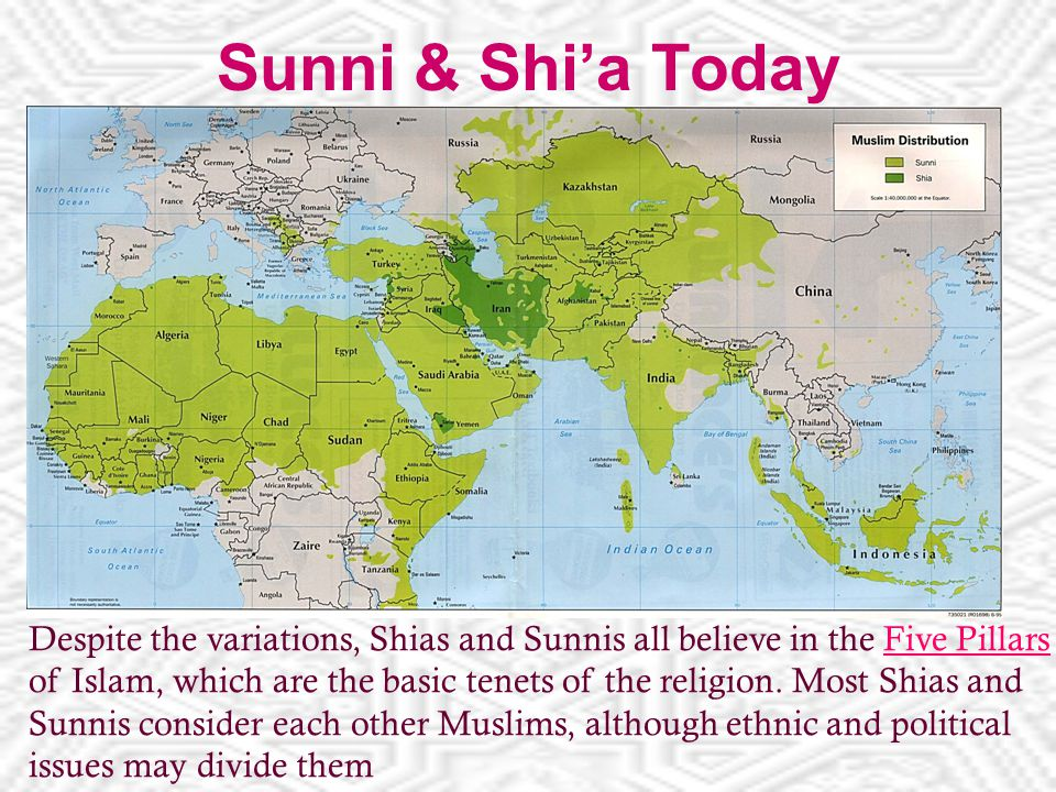 Sunni & Shi'a Today Despite the variations, Shias and Sunnis all believe in the Five Pillars of Islam, which are the basic tenets of the religion.