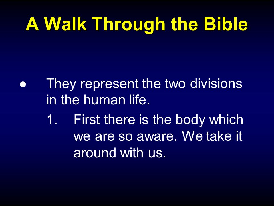 A Walk Through the Bible ●They represent the two divisions in the human life.