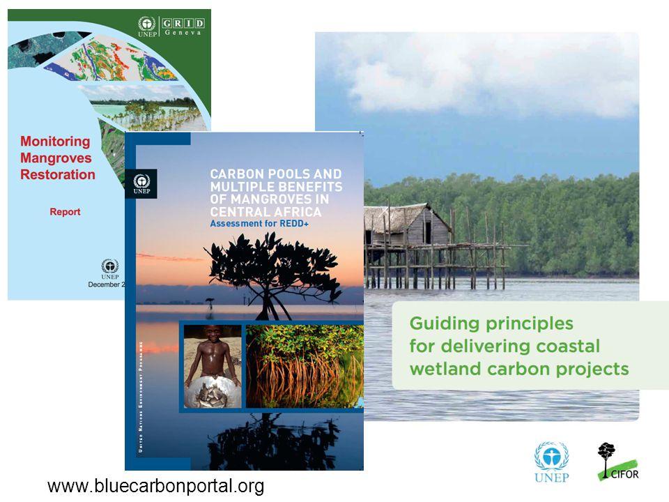 www.bluecarbonportal.org