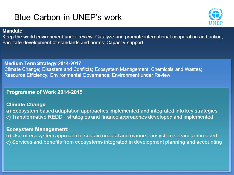 Mandate Keep the world environment under review; Catalyze and promote international cooperation and action; Facilitate development of standards and norms; Capacity support Mandate Keep the world environment under review; Catalyze and promote international cooperation and action; Facilitate development of standards and norms; Capacity support Blue Carbon in UNEP's work Medium Term Strategy 2014-2017 Climate Change; Disasters and Conflicts; Ecosystem Management; Chemicals and Wastes; Resource Efficiency; Environmental Governance; Environment under Review Medium Term Strategy 2014-2017 Climate Change; Disasters and Conflicts; Ecosystem Management; Chemicals and Wastes; Resource Efficiency; Environmental Governance; Environment under Review Programme of Work 2014-2015 Climate Change a) Ecosystem-based adaptation approaches implemented and integrated into key strategies c) Transformative REDD+ strategies and finance approaches developed and implemented Ecosystem Management: b) Use of ecosystem approach to sustain coastal and marine ecosystem services increased c) Services and benefits from ecosystems integrated in development planning and accounting Programme of Work 2014-2015 Climate Change a) Ecosystem-based adaptation approaches implemented and integrated into key strategies c) Transformative REDD+ strategies and finance approaches developed and implemented Ecosystem Management: b) Use of ecosystem approach to sustain coastal and marine ecosystem services increased c) Services and benefits from ecosystems integrated in development planning and accounting