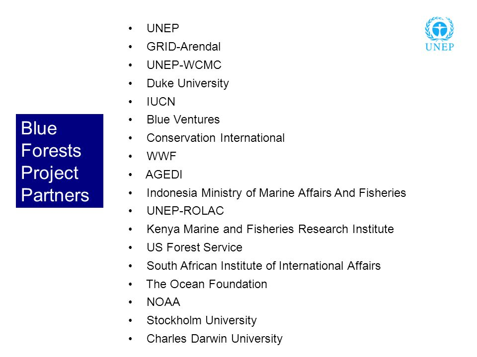 UNEP GRID-Arendal UNEP-WCMC Duke University IUCN Blue Ventures Conservation International WWF AGEDI Indonesia Ministry of Marine Affairs And Fisheries UNEP-ROLAC Kenya Marine and Fisheries Research Institute US Forest Service South African Institute of International Affairs The Ocean Foundation NOAA Stockholm University Charles Darwin University Blue Forests Project Partners